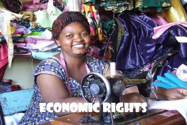 economic tailor
